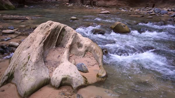 View of rock with grooves lying in river in the Zion Narrows. Royalty-free stock video