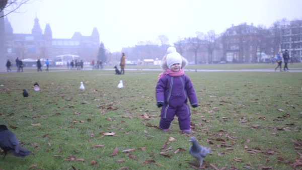 Hand-held shot of a toddler chasing a crow Royalty-free stock video