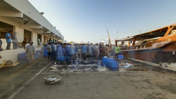 Fish market in the emirate of Ajman hyperlapse with people selling fish and  ship in the background  United Arab Emirates stock footage