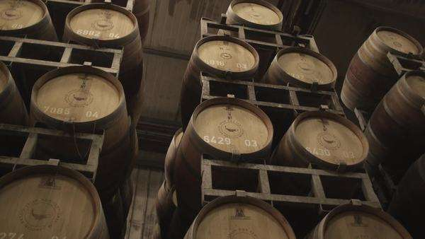 Wine barrels Rights-managed stock video