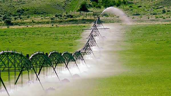 Wide shot of an irrigation crawler in a field Royalty-free stock video