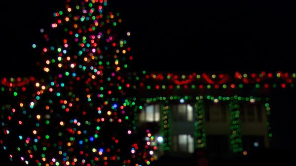Outdoor Christmas Tree With Lights.An Outdoor Christmas Tree In Front Of A House Trimmed With Lights Coming Into Focus Stock Footage