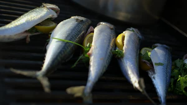 Close-up shot of mackerel fish cooked on a grill Royalty-free stock video