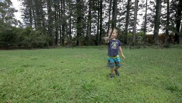 Two year old boy running with a stick in a big backyard Royalty-free stock video
