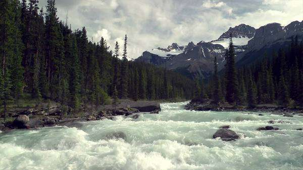 The Mistaya Canyon in Banff National Park Royalty-free stock video