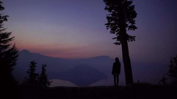 Woman standing by single tree while look at mountain landscape at sunset Rights-managed stock video