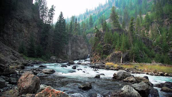 Wide shot of a river in Wyoming, USA Royalty-free stock video