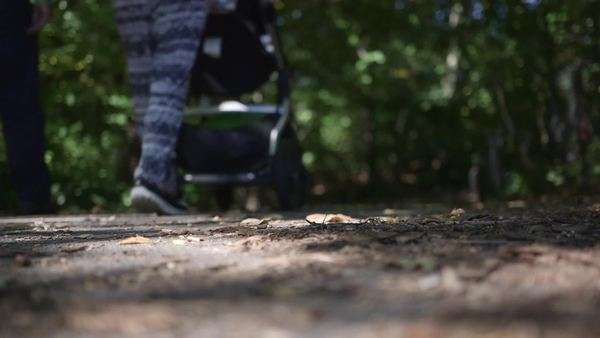 Ground level shot of a couple walking with their stroller on a forest path Royalty-free stock video