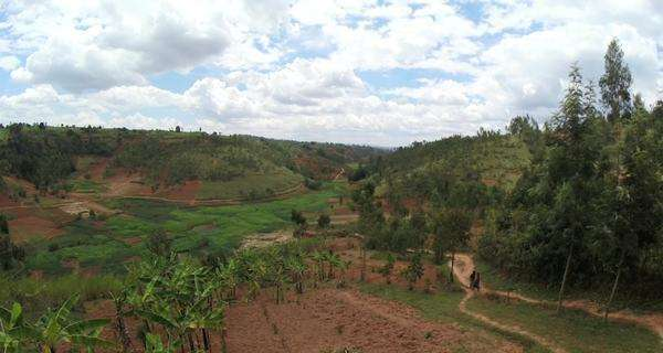 Wide shot of agricultural fields in Burundi, Africa Royalty-free stock video