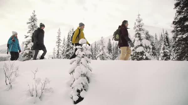 Wide-angle shot of people walking in the snow Royalty-free stock video