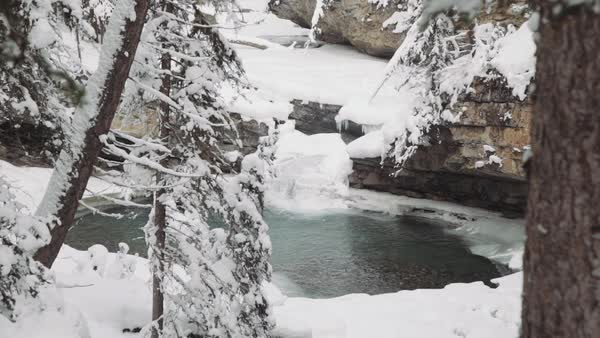 Medium shot of a pool in a snowy forest in Johnston Canyon Royalty-free stock video