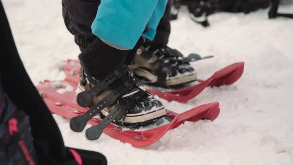 Close-up shot of a person fastening snowshoes Royalty-free stock video