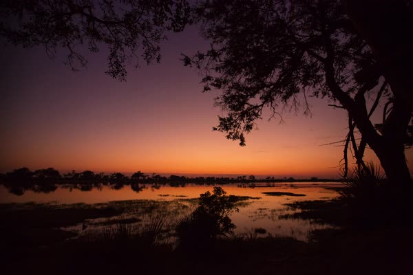 Timelapse of Okavango Delta at dawn Royalty-free stock video