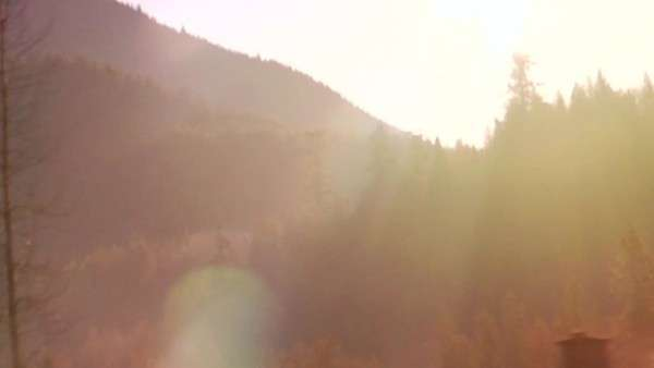 A view of the forest in the mountains as seen from a moving vehicle Royalty-free stock video