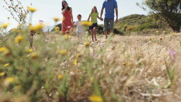 Dolly shot of family walking through flower meadow in countryside. Royalty-free stock video