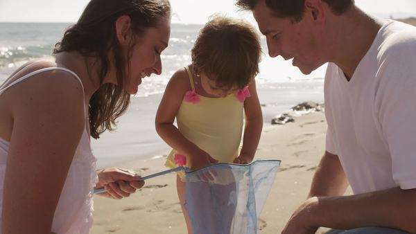 Parents and daughter with fishing net at the beach. Royalty-free stock video