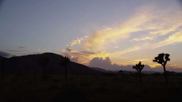 Tracking shot of California desert at sunset Royalty-free stock video