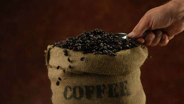 Scooping coffee beans, slow motion Royalty-free stock video