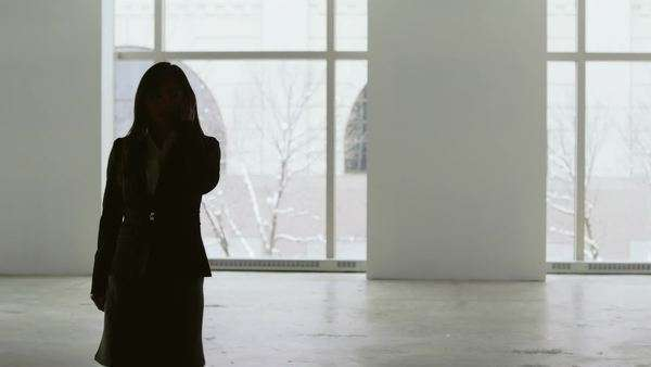 An asian business woman is silhouetted against a set of windows while she talks on the phone Royalty-free stock video