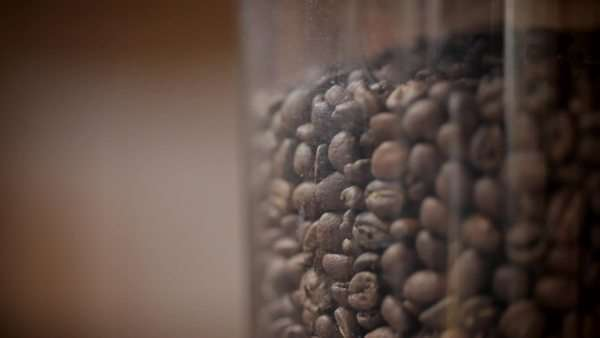 Still shot of coffee beans in a grinder, out-of-focus people walk past Royalty-free stock video