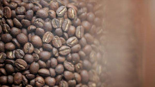 Still shot of coffee beans in a container Royalty-free stock video