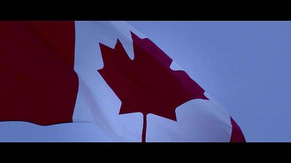 Close-up shot of Canadian flag waving, in slow motion Royalty-free stock video
