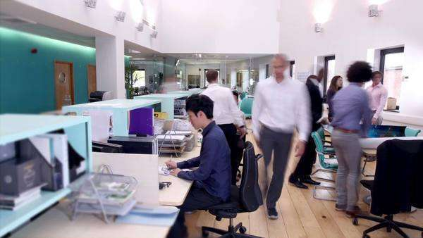 Timelapse of attractive young professionals at work in busy office Royalty-free stock video