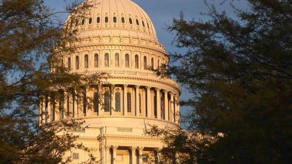 Looking through the trees, up the side of the U.S. Capitol building during the golden hour. Royalty-free stock video
