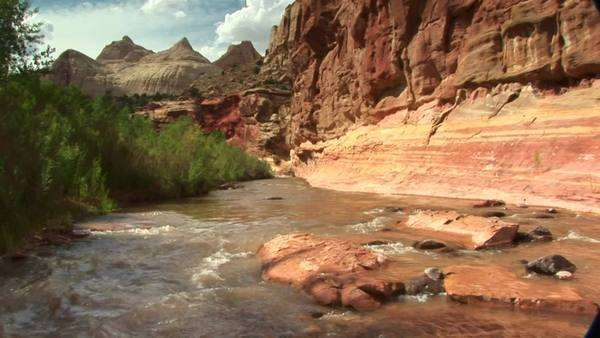 Medium shot of the Freemont River running through the canyons of Capitol Reef National Park in Utah. Royalty-free stock video