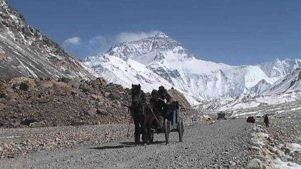 Tibetan men and climber riding in a carriage pulled by horse near base camp with Mt. Everest in the background Royalty-free stock video