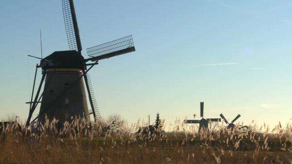 A slow pan across to windmills rising from the grass in Holland. Royalty-free stock video