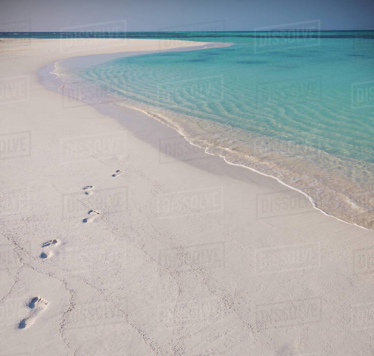 992b326b0a6d4 Footprints in sand on tropical beach - Stock Photo - Dissolve