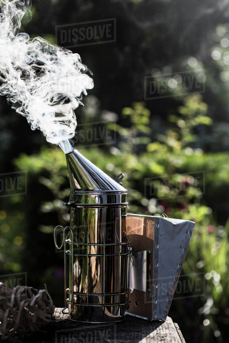 Close up of metal smoker used by beekeeper to calm bees  stock photo