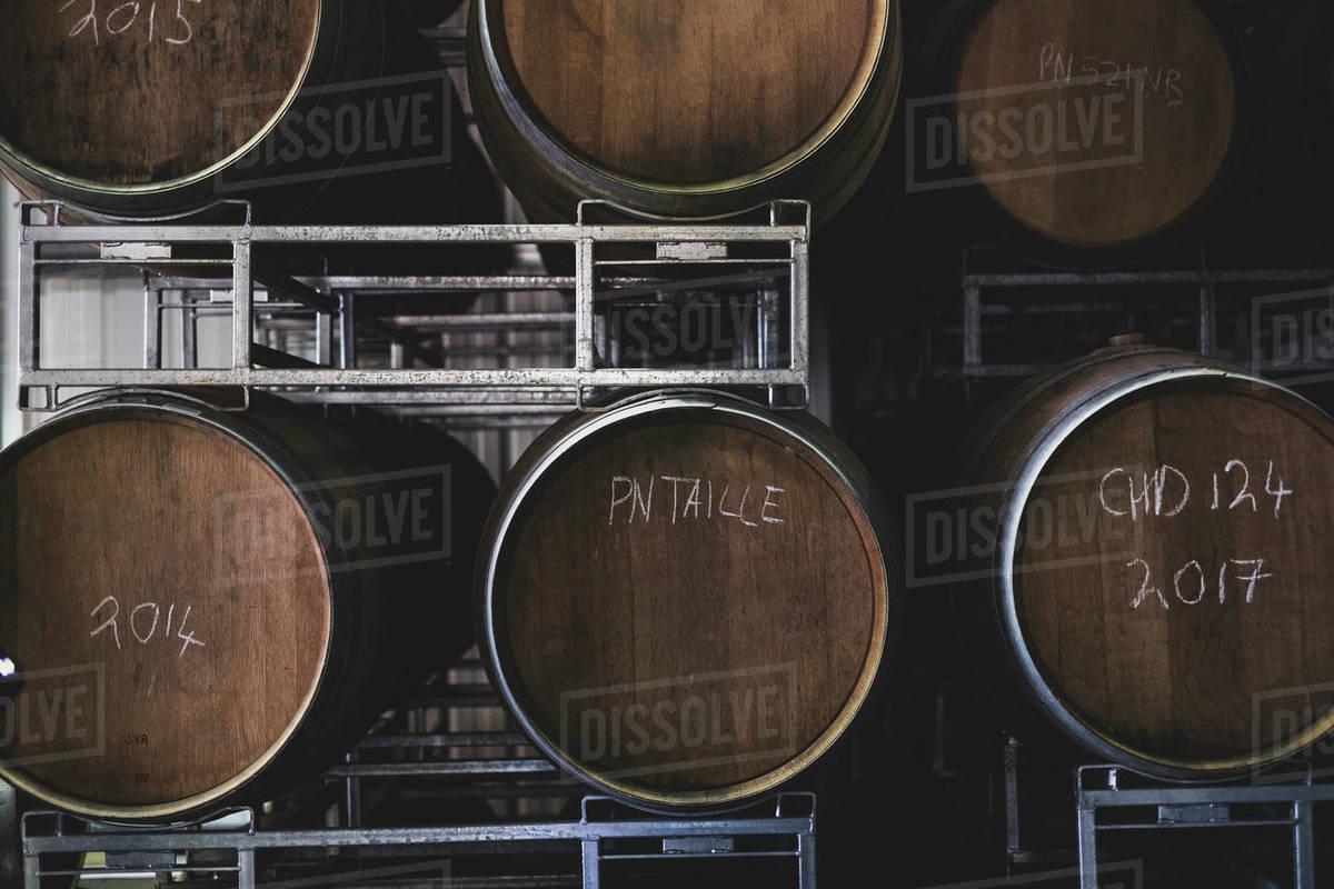 Oak wine barrels in a winery  stock photo