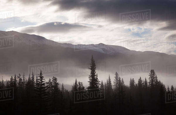 Misty conditions over the landscape and forest, Jasper National Park, Alberta, Canada Royalty-free stock photo