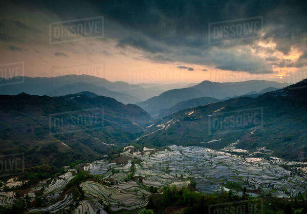 Terraced rice fields, Yuanyang, China Royalty-free stock photo
