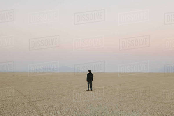 Man standing in vast, desert landscape Royalty-free stock photo