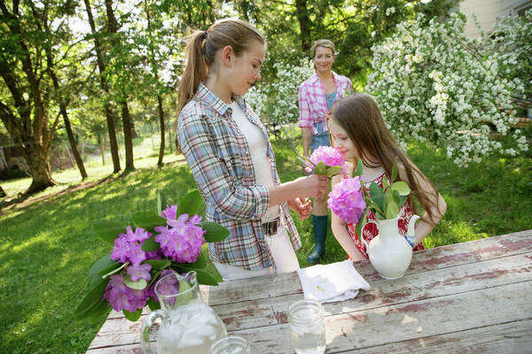 Three people gathering flowers and arranging them together. A mature woman, a teenager and a child.  Royalty-free stock photo