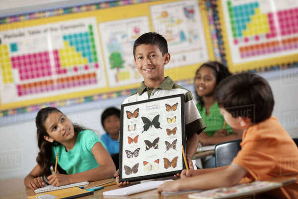 A boy standing in front of classmates, holding up a frame with butterfly specimens.  Royalty-free stock photo