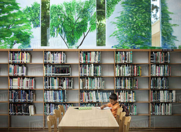 A child seated at a library table working, studying his books.  Royalty-free stock photo