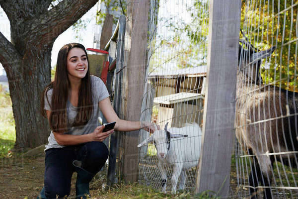 A young woman kneeling down and petting a kid goat through a wire fence. Royalty-free stock photo