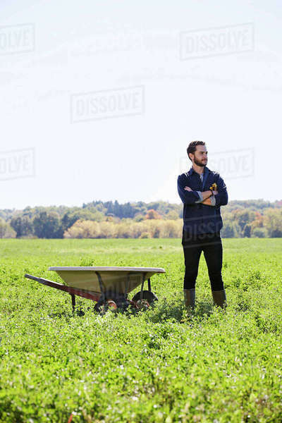A young man in working clothes standing in a crop field with arms folded next to a wheelbarrow. Royalty-free stock photo