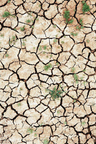 Cracked parched soil surface of the Painted Desert in Oregon, USA. Drought conditions. Royalty-free stock photo