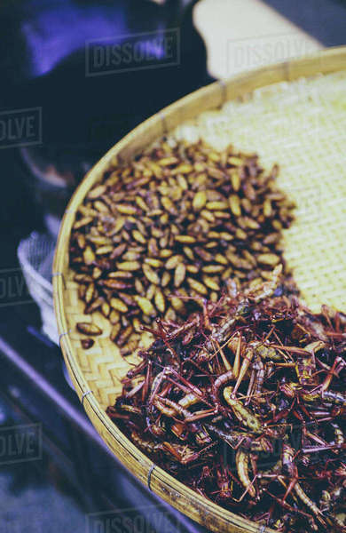 The Damnoen Saduak Floating Market, a tray of fried grasshoppers and larva for sale at floating market  Royalty-free stock photo