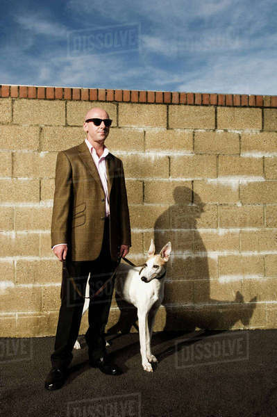 Man wearing a suit standing in front of a yellow brick wall, holding a white greyhound on a lead. Royalty-free stock photo