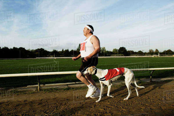 Man in sportswear running on a racetrack, with a white greyhound wearing red bib with number one. Royalty-free stock photo
