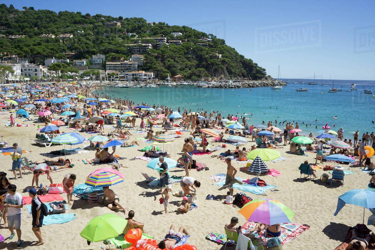 Sunbathers On Beach Llafranc Costa Brava Catalonia Spain