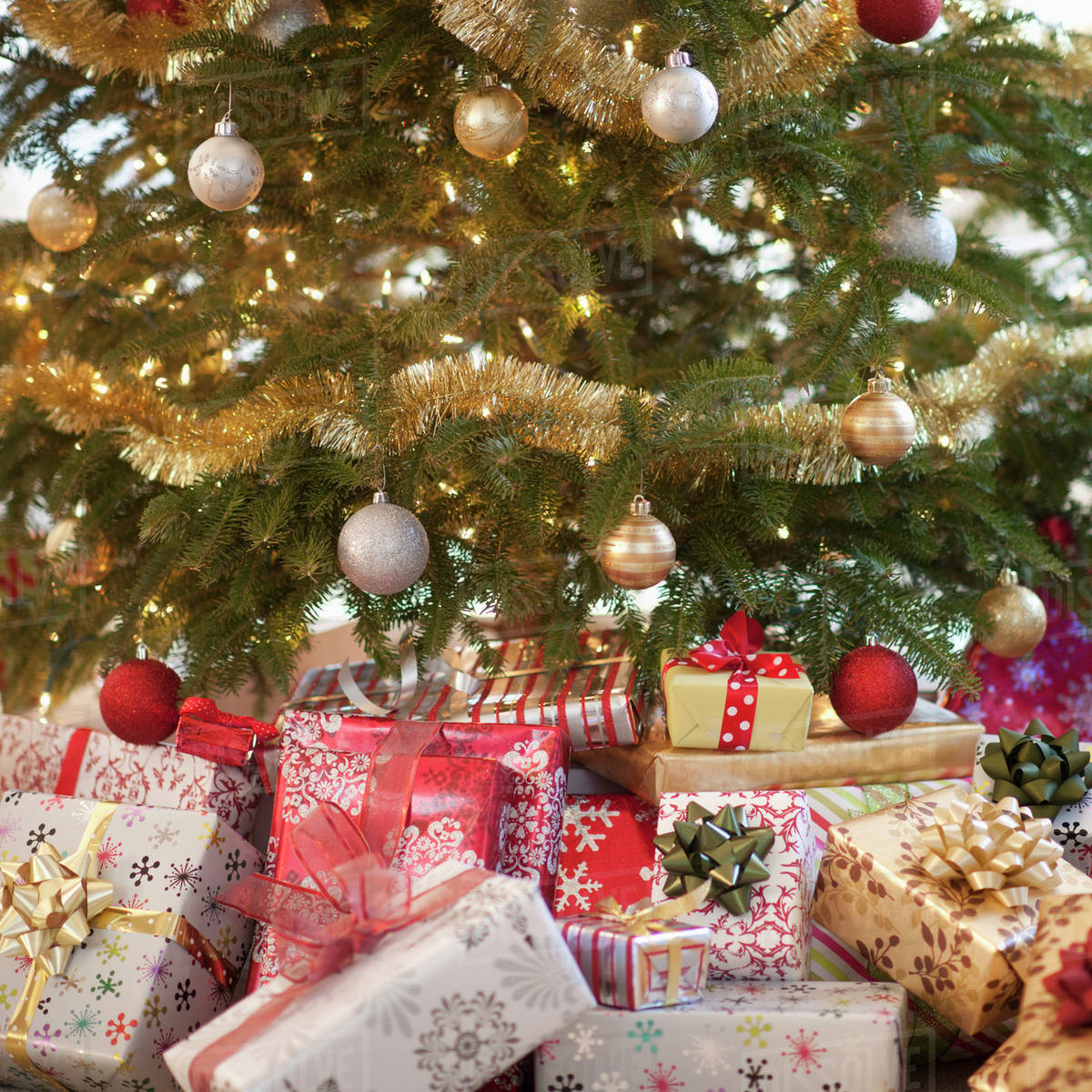 colorful gifts under christmas tree