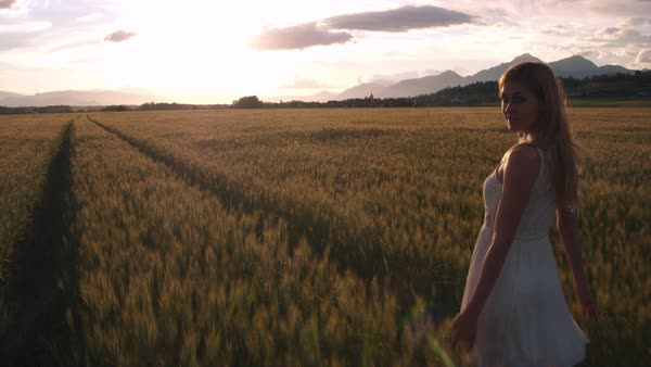Pretty girl in a white dress in the yellow wheat field looking into the camera while walking at sunset Royalty-free stock video