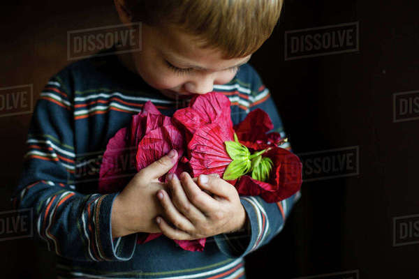 Close-up of boy holding red flower while standing at home Royalty-free stock photo